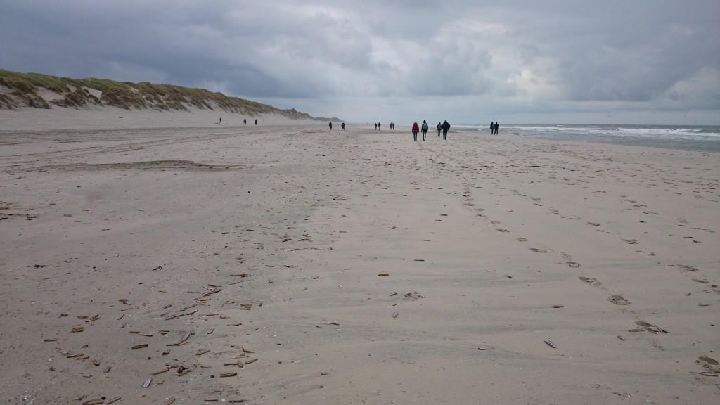 Spirula De Boer Ameland Fig5-strand-bij-Oerderduinen-Foto-JHdeBoer