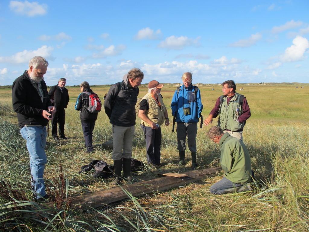 Texel Slufterexcursie 2014-09-21